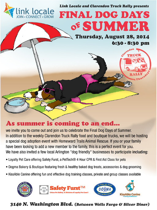 Dog Days of Summer Flyer